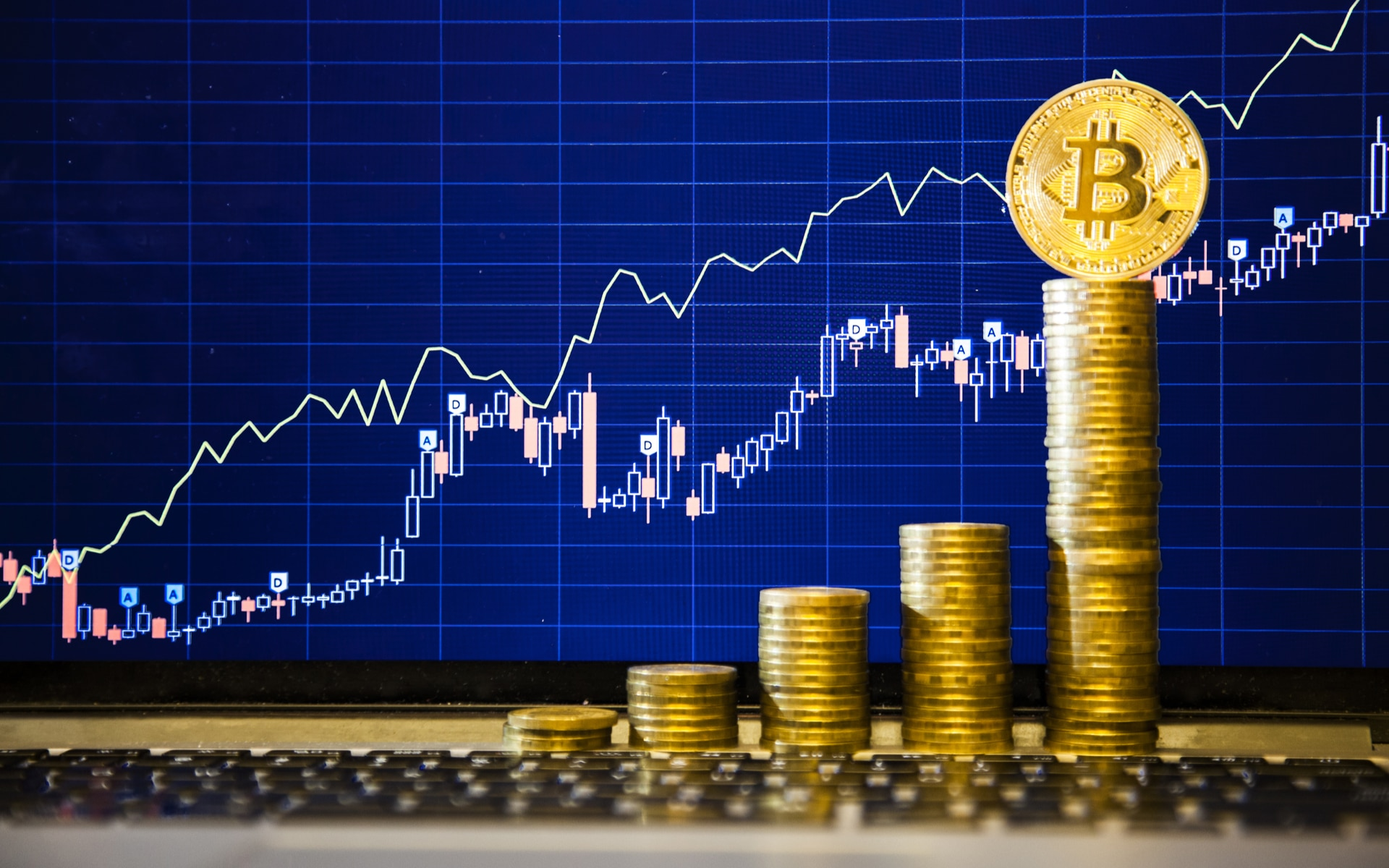 Trading Bitcoin: guida completa su come Investire - residencevallelonga.it